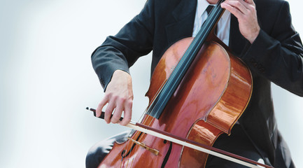 Orchestra Cello Player on White Background