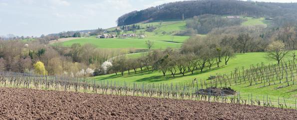 Frühling in der Landwirtschaft