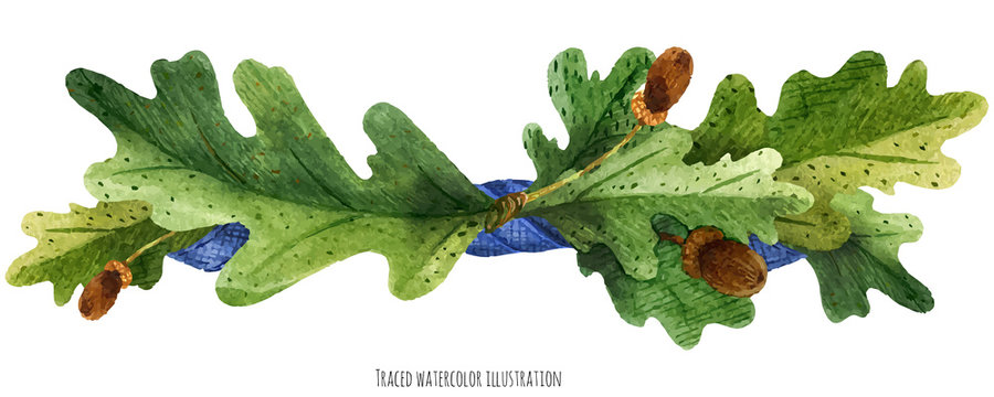 Vignette from oak leaves with blue silk ribbon