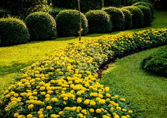 Foto op Canvas Meloen Luxury landscape design of the tropical garden. Beautiful view of tropical landscape