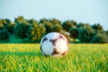 Soccer ball on field grass. Outdoor games. 3d
