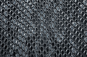 Wall Mural - Snake skin background. Grey color.