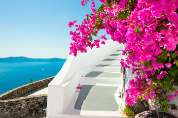 Foto auf Acrylglas Santorini White architecture and pink flowers with sea view. Santorini island, Greece.