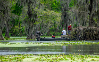 People are enjoying canoing, boating and fishing in swamp