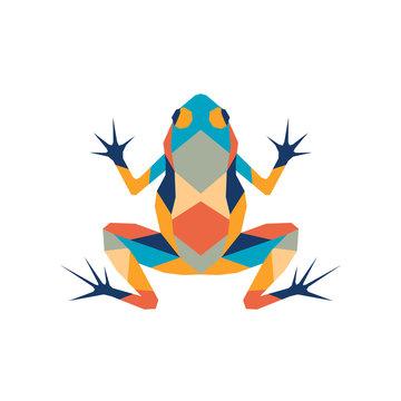 Geometric polygonal frog. Abstract colorful animal. Vector illustration.