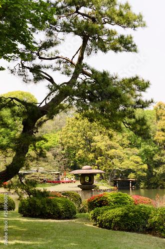 Garten Landschaft Japan Blumen Stockfotos Und Lizenzfreie Bilder