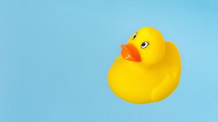 yellow rubber bath duck in water