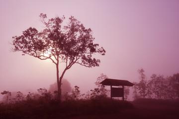 Poster Crimson Natural mist landscape in the morning