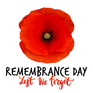 Remembrance day vector poster design