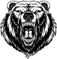 Head of a ferocious bear