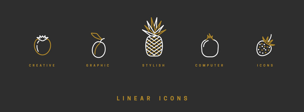 Fruit icons set in linear style. Vector illustration