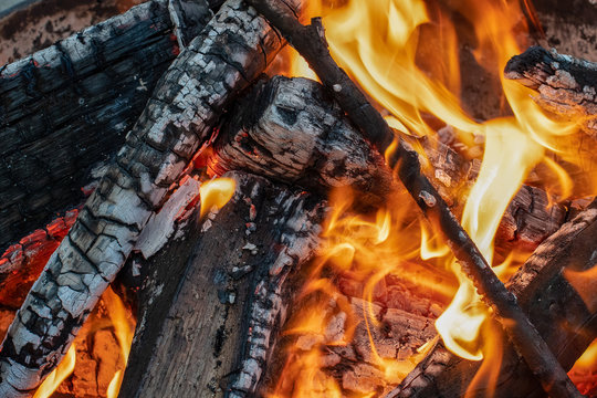 Wood burns with flames in a fire pit ~FIRESIDE~