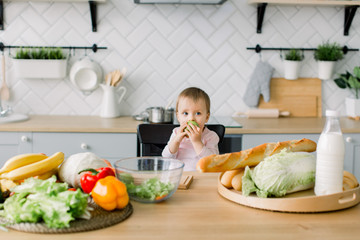 Baby eating fruit. Little baby girl eating green apple while sitting in black high chair in sunny kitchen. Healthy nutrition for kids. Solid food for infant. Snack or breakfast for young child