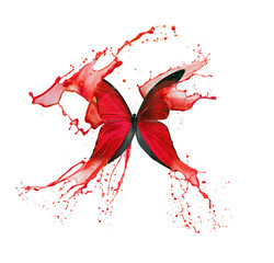 Fototapete - red butterfly in paint splash isolated on a white background