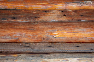Old wooden texture for background in rustic style. Free space for text. Bark of aged tree.