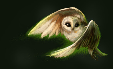 Flying owl. The digital painting. Night bird.