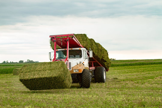 Picking Hay Bales in Field