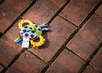 Toy Lost Outdoors