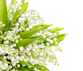 Photo sur Aluminium Muguet de mai Bouquet of lily of the valley on white background