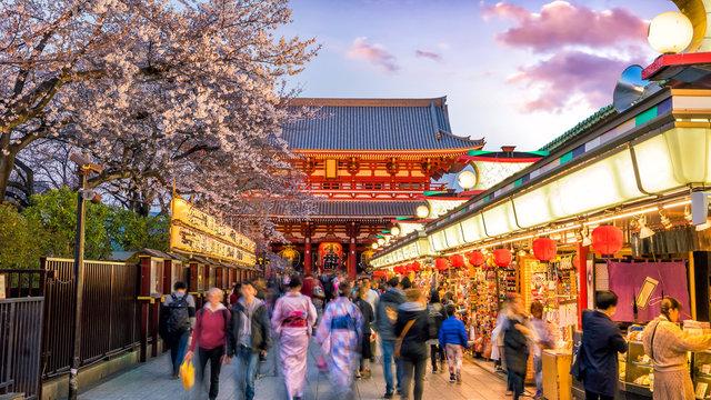 Tourists at shopping street in Asakusa connect to Sensoji Temple, Tokyo Japan with sakura trees