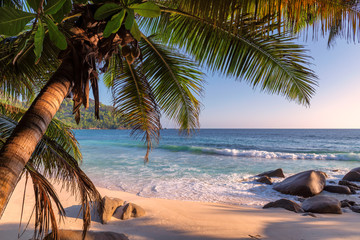 Fototapete - Exotic beach at sunset on tropical island.
