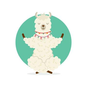 Cute cartoon llama practicing yoga pose. Animal yoga. Relaxation and meditation illustration.