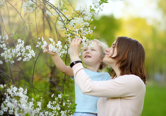 Cute little girl in the arms of her beautiful mother in cherry or apple orchard during flowering. Easter.