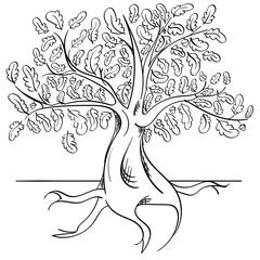 Line art of an oak tree