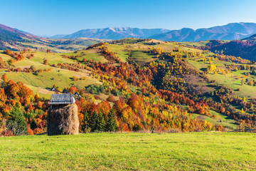 mountainous countryside in autumn. rural fields on grassy hills. trees in fall foliage. wonderful sunny weather in evening. hay shed
