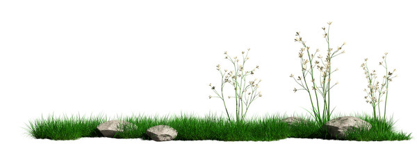 grass and flowers Isolated on white background with clipping path - Illustration - 3d rendering