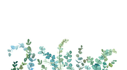 Watercolor eucalyptus minimalistic drawing. Hand painted plants, branches, leaves on white background.  Greenery wedding invitation. Natural card design. Isolated on white background. Wall mural