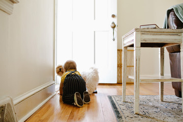 Little boy crawling with dog in the living room