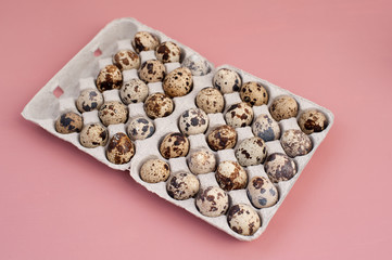 Quail eggs on pink background
