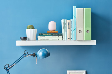 Shelf with different books and cactus.