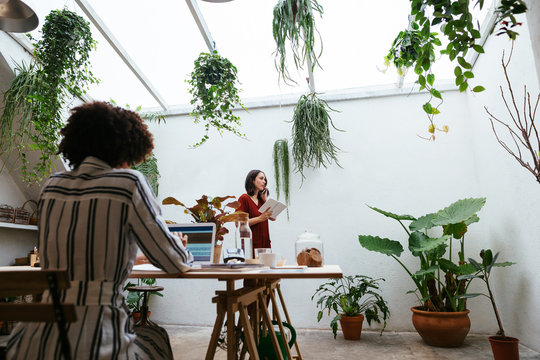 Co-workers working in office full of plants.