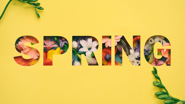 """Flower Decoration with word """"""""spring"""""""""""
