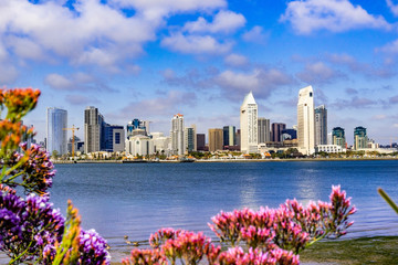 Panoramic view of the downtown San Diego skyline taken from Coronado Island, California Wall mural