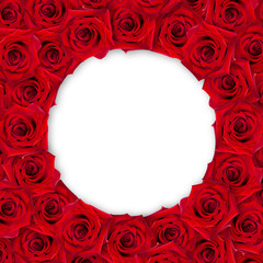 Background of red roses around on a white background. Vintage style. Mock-up.