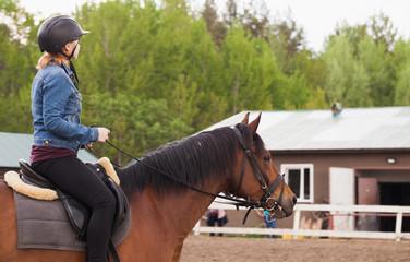 Teenage girl rides brown horse