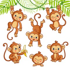 Vector set with monkey in different poses.