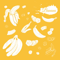 Inverted collection of white  bananas. Whole and sliced elemets isolated on yellow  background. Hand drawn sketch.