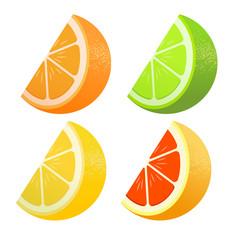 Set of citrus. Lemon, lime, grapefruit, orange. Lobules Flat realism style. Cartoon style. Vector illustration.