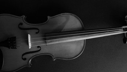 Musical instrument. Violin. Old violin. Black and white photo