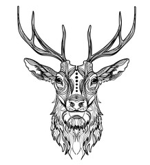 Head of a deer. Meditation, coloring of the mandala. Head of a tiger with a mustache and stripes. Manual drawing.
