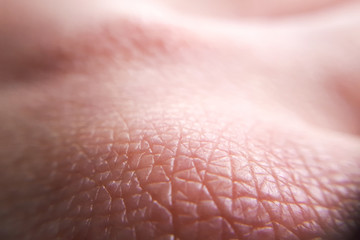 macro skin of human hand.Medicine and dermatology concept. Details of human skin background