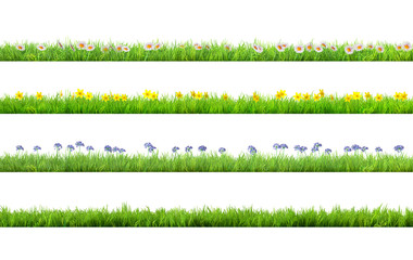 a spring grass with daisy and narcissus flowers isolated Fototapete