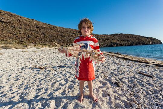 5 year old boy playing with skeleton of puffer fish, Isla Espiritu, Baja