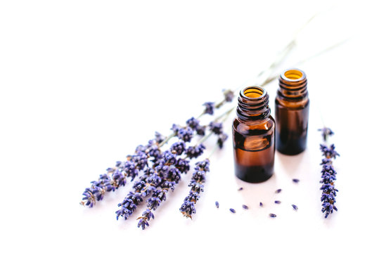 Dried lavender with a bottle of essential oil isolated on white background.