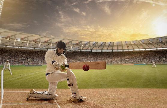 Left handed batsman in action in a Cricket Match