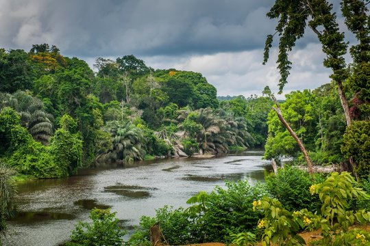 Ntem river flowing through the rainforest, Campo, Southern Region, Cameroon, Africa